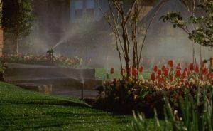 Lawn sprinklers in Delaware